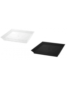 Square plate (packs of 25 units) FINGER FOODS
