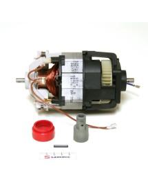 Motor Set Electronics Sammic 220v TR-350: 9b