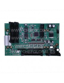Placa Display Epelsa LPC2134