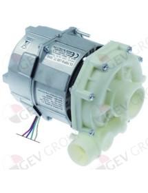 pump inlet ø 50mm outlet ø 40mm type L80.T7_5040 230V 50Hz 1 phase 0,6kW 0,8HP L 205mm Elframo