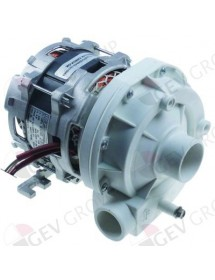 pump inlet ø 45 outlet ø 38 type ZF290SX 230V 50Hz 1 phase 0,65kW 0,88HP L 200mm OZTI Marels, Modular, Rancilio